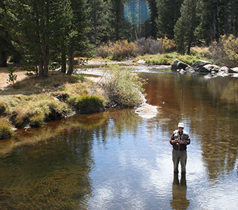 Yosemite Fishing