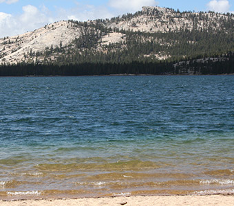 Tenaya Lake Wedding Location