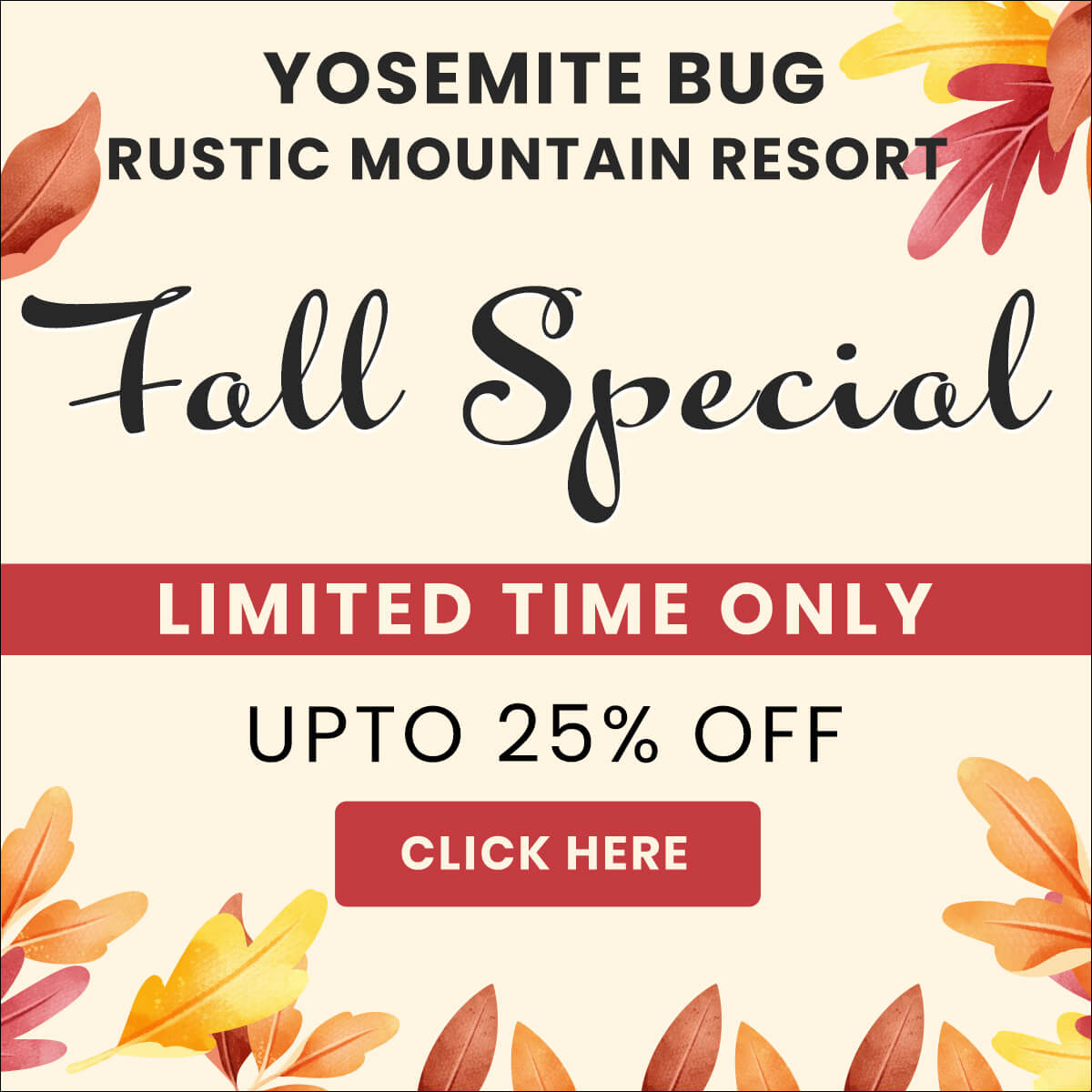 Fall Special: 25% off to ALL customers!