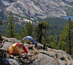 Yosemite Stakeholder Backpacking Camping