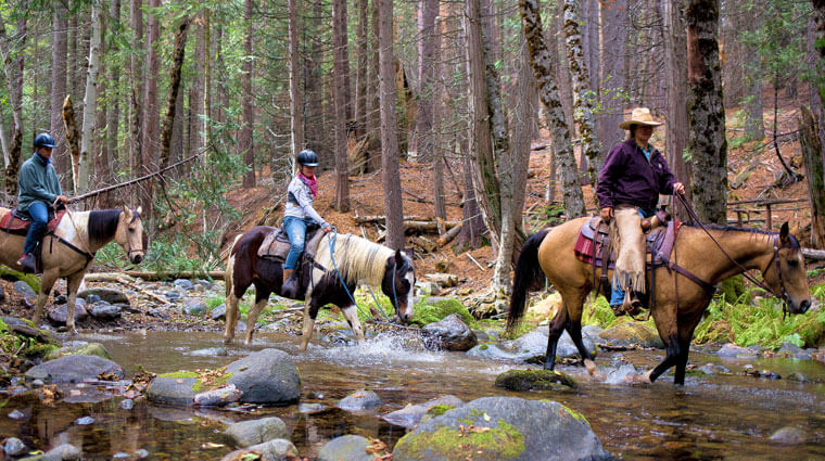 horseback riding with Yosemite Trails Saddle and Sleigh Company