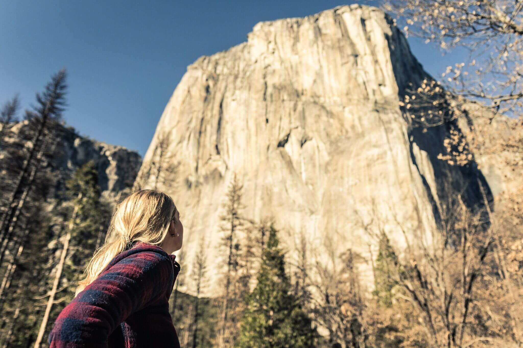 yosemite tours from san francisco