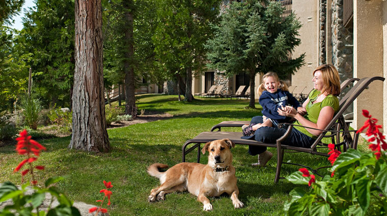 Tenaya Lodge Pet Friendly