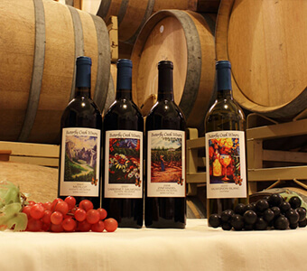 Plan Your Wine Tasting Adventure on Your Getaway Stay to Yosemite