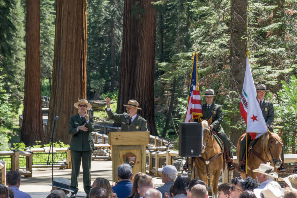 Giant Sequoias, Big Trees, Yosemite, Mariposa Grove, Ceremony