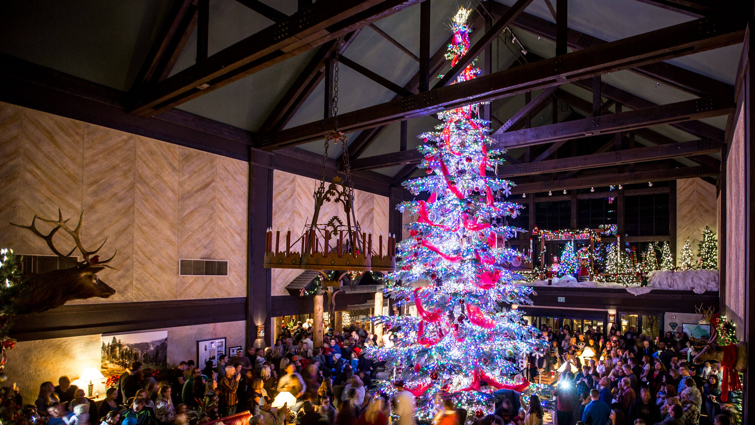 Tenaya Lodge Christmas Tree Lighting Ceremony