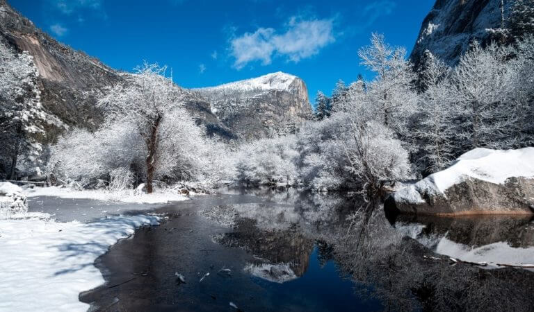 Holidays in Yosemite