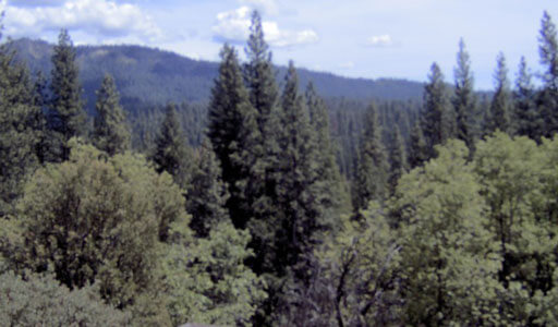 UC Merced Yosemite Field Station Webcam