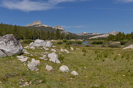 Tuolumne Meadows Webcam