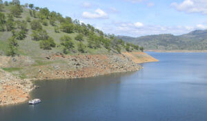 Lake McClure & Lake McSwain: Fishing Mariposa County's Twin Gems