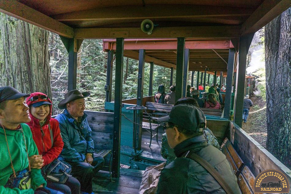 Groups enjoying the covered cars aboard the narrow gauge train