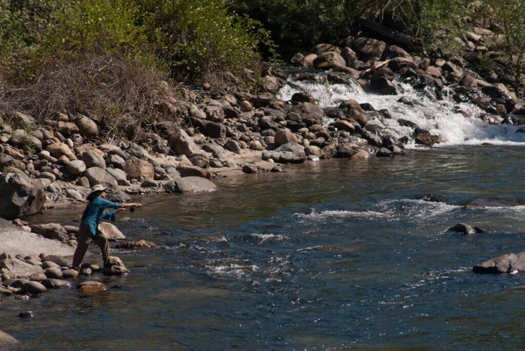 Stanislaus National Forest fishing