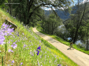 winter hiking at the Merced River Trail
