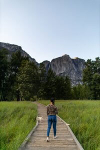 Woman and dog on a boardwalk in Yosemite Valley