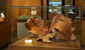 ca mining and mineral museum-natural copper