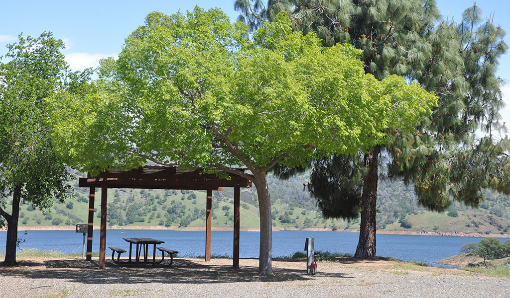 campsite at bagby campground