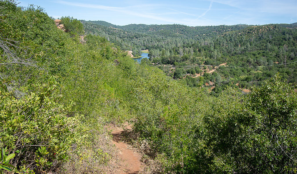 View from a trail in Stockton Creek Preserve