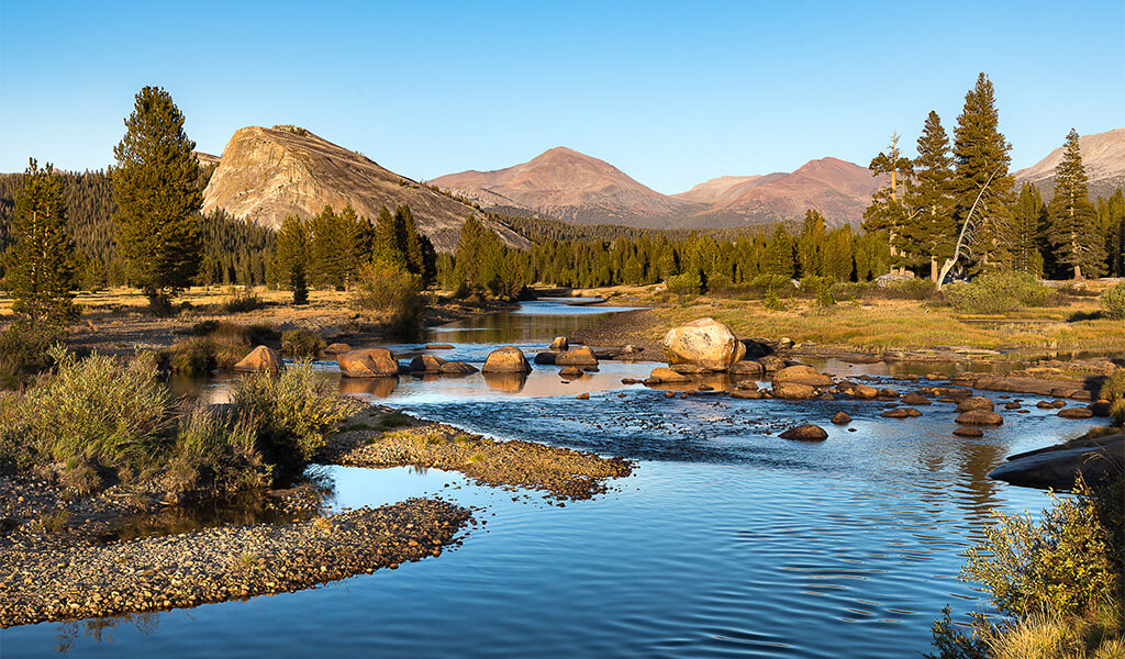 Meadows and domes in Tuolumne Meadows